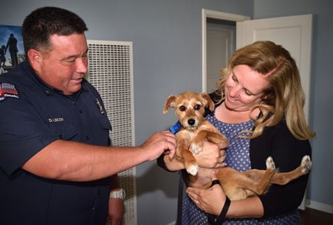 Capt. Dan Lecon of Anaheim Fire & Rescue, part of the truck company that responded to the house fire, greets Fiona, who was rescued in a fire, as she is held by her owner Amber Cooper of Anaheim.