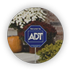 ADT Review by Customer Name